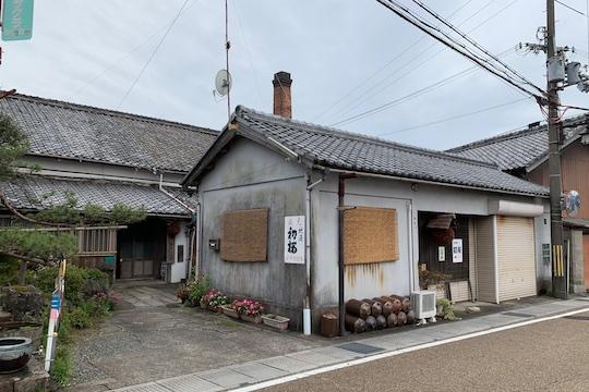 初桜1.jpg